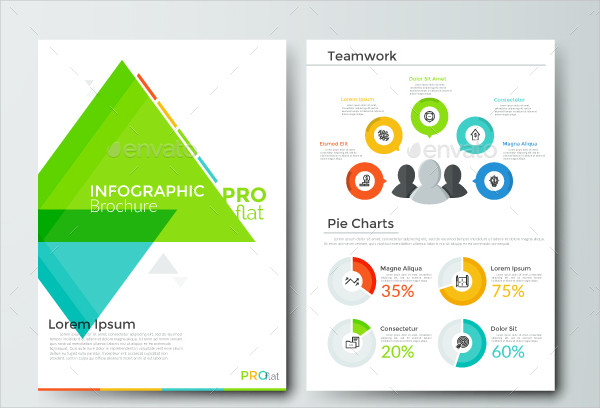 Pro Flat Infographics Brochure Template