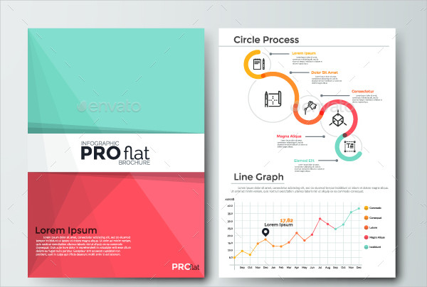 Stylish Infographic Business Brochure Template
