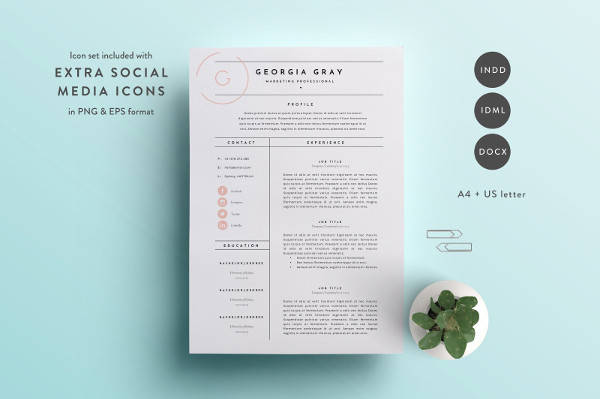 Hipster Professional Resume Template