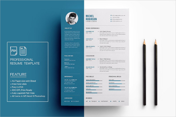 Print Ready Professional Resume Template