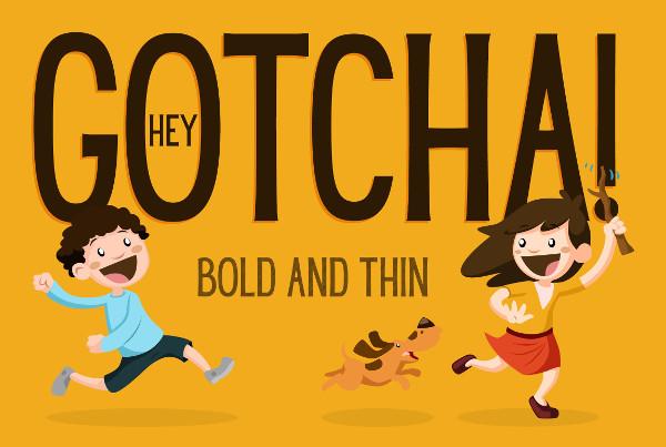 Bold & Thin Regular Font