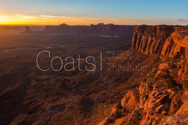 Coats Thin & Coats Thin Italic Regular Font