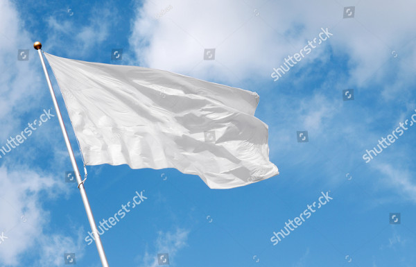 Perfect Mockup of Flag