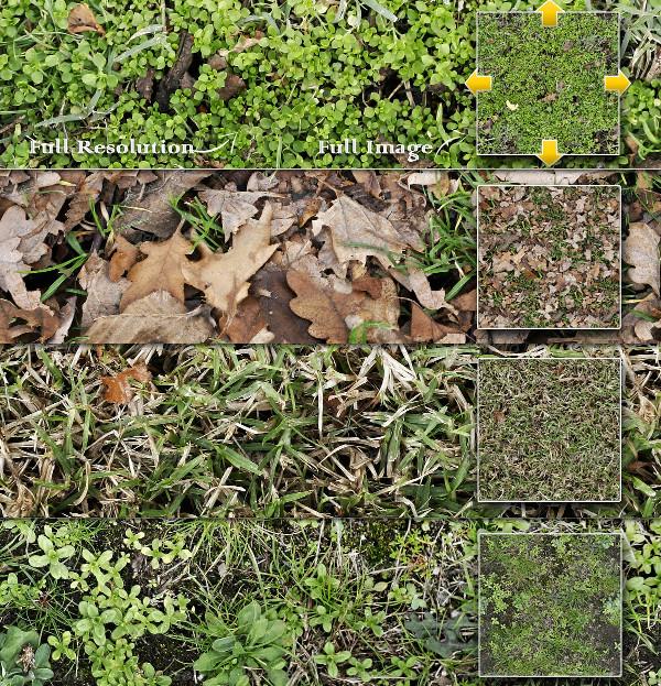 10 Massive Grass Seamless Texture Pack