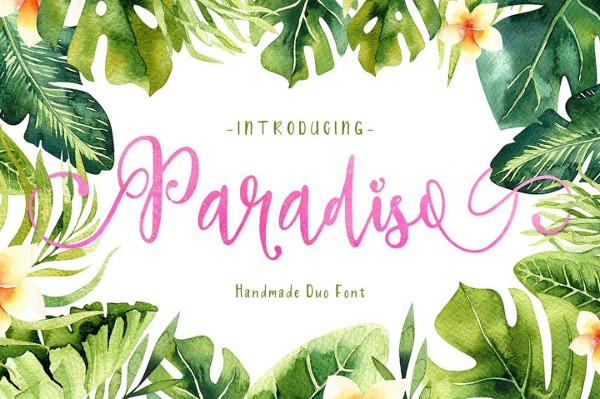 Professional Paradiso Font Duo