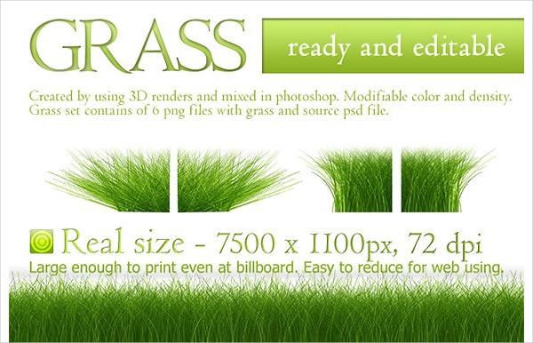 Seamless Grass Texture Design