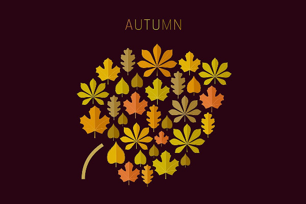 Autumn Background With Icons Of Leaves In Flat Style