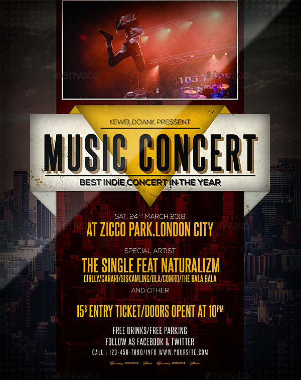 Music Concert Party Flyer or Poster