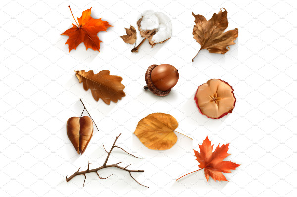 Set with Autumn Vector Illustration Icons