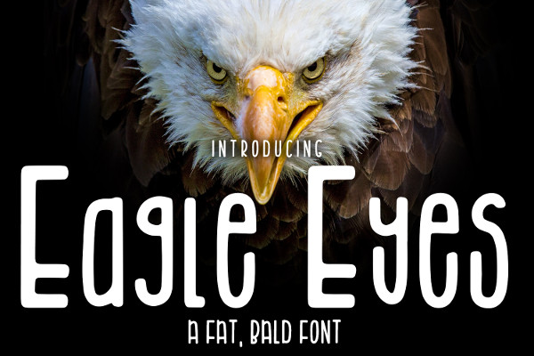 Eagle Eyes Bold Font for Craft