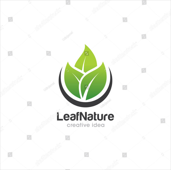 Leaf Creative Concept Logo Design