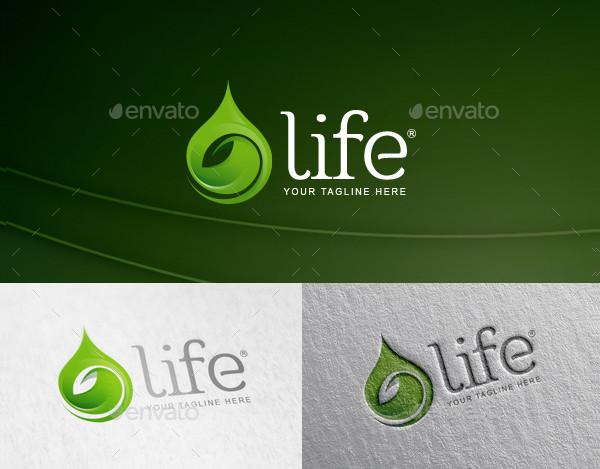 Water Leaf Drop Logo Template