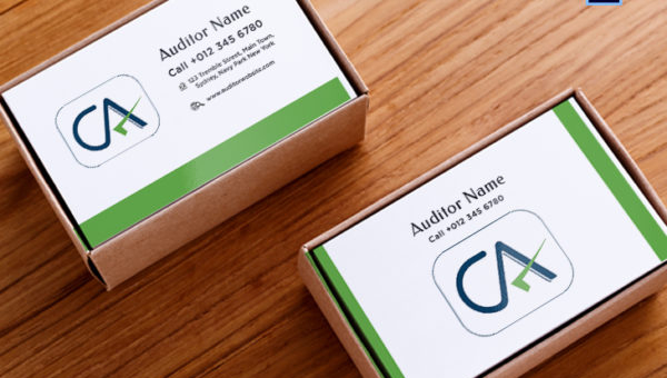 Auditor Business Card Templates