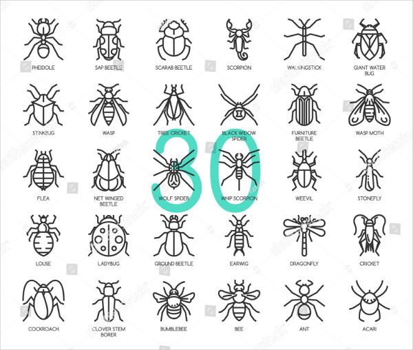 Insect Thin Line And Pixel Perfect Icons