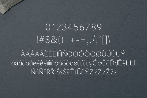 Number Font Styles