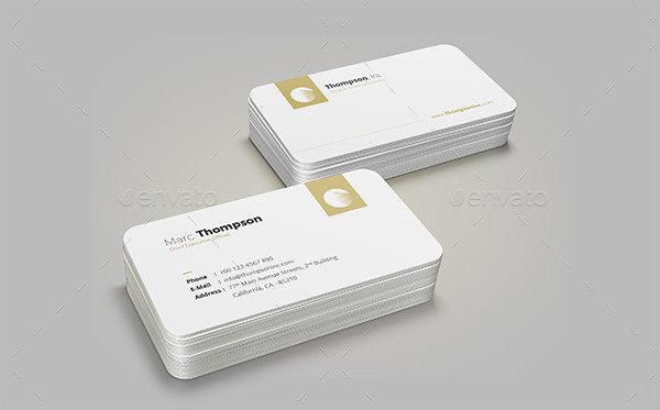 Professional Minimalist Business Card