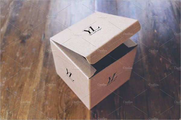 Classy Cardboard Box Mockup