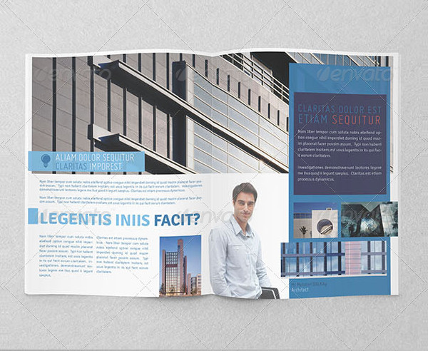 Architecture Project Information Brochure Bifold