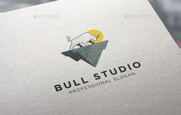 Professional Bull Studio Logo