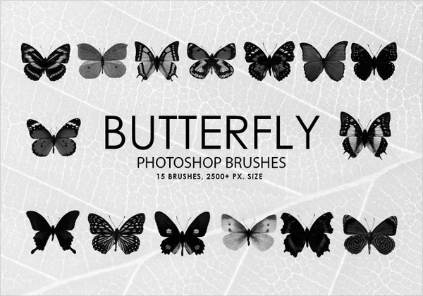 Free Butterfly Photoshop Brush Collection