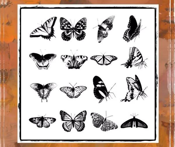 Grunge Butterfly Brush Set