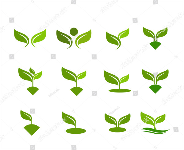 Leaf Set Icon Vector