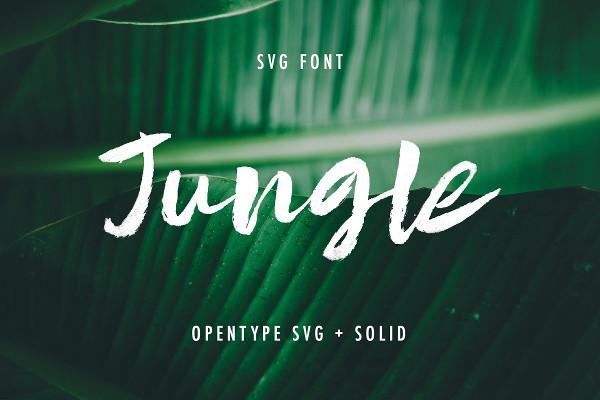 Beautiful Jungle Fonts