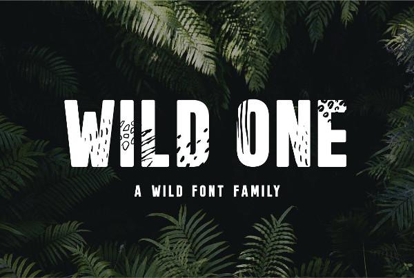 Wild Font Family